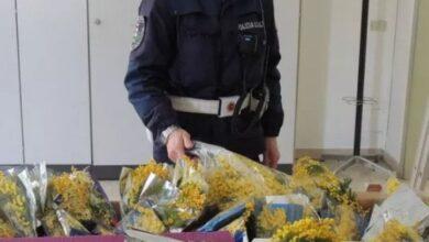 5 آلاف يورو فرضتها الشرطة الإيطالية على مغربي يبيع الورود